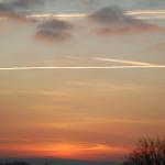 sunsetcoppice (1)